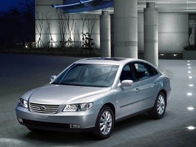 Каркасные шторки на Hyundai Grandeur 4 TG (с 2005 по 2011)
